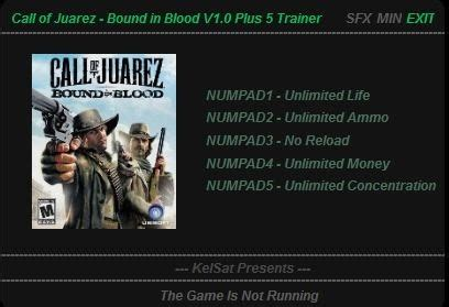 Trainers Games: Trainer Call of Juarez Bound in Blood +5